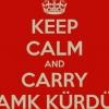 kürdistan ı kuracağız