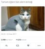 yaran twitter iletileri