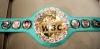 dünya boks şampiyonu reis