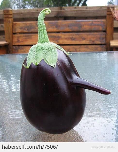 patlıcan pahalıysa bu dünyanın sonu değil