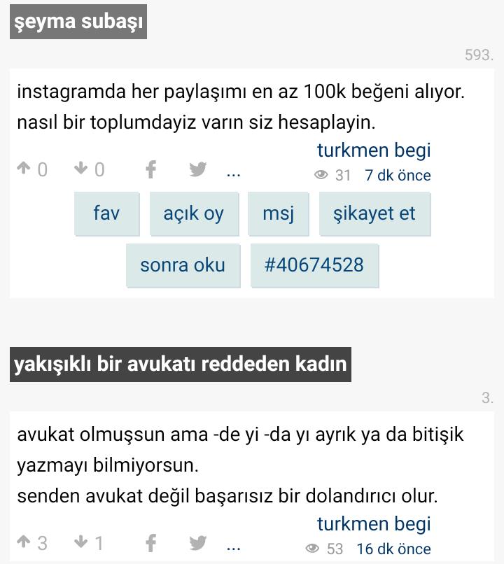 turkmen begi