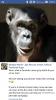 şempanze çarli nin son hali