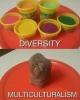 ırkçılık