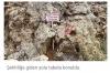 iki ayrı yerde mezarı bulunan tek şehit