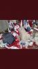 akplilerin türk bayrağını oyuncak sanması