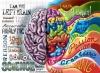 beynin sağ lobu vs beynin sol lobu