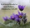 tevrattan bir ayet