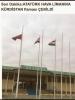 atatürk havalimanına kürdistan bayrağı çekilmesi