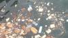 deniz sacli kiz