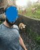 sırat köprüsünden koyuna binip geçmek