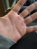 sözlük erkeklerinin elleri