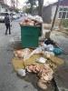 çöp tenekelerine bırakılan kurban atıkları