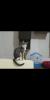 evde kedi bakmak