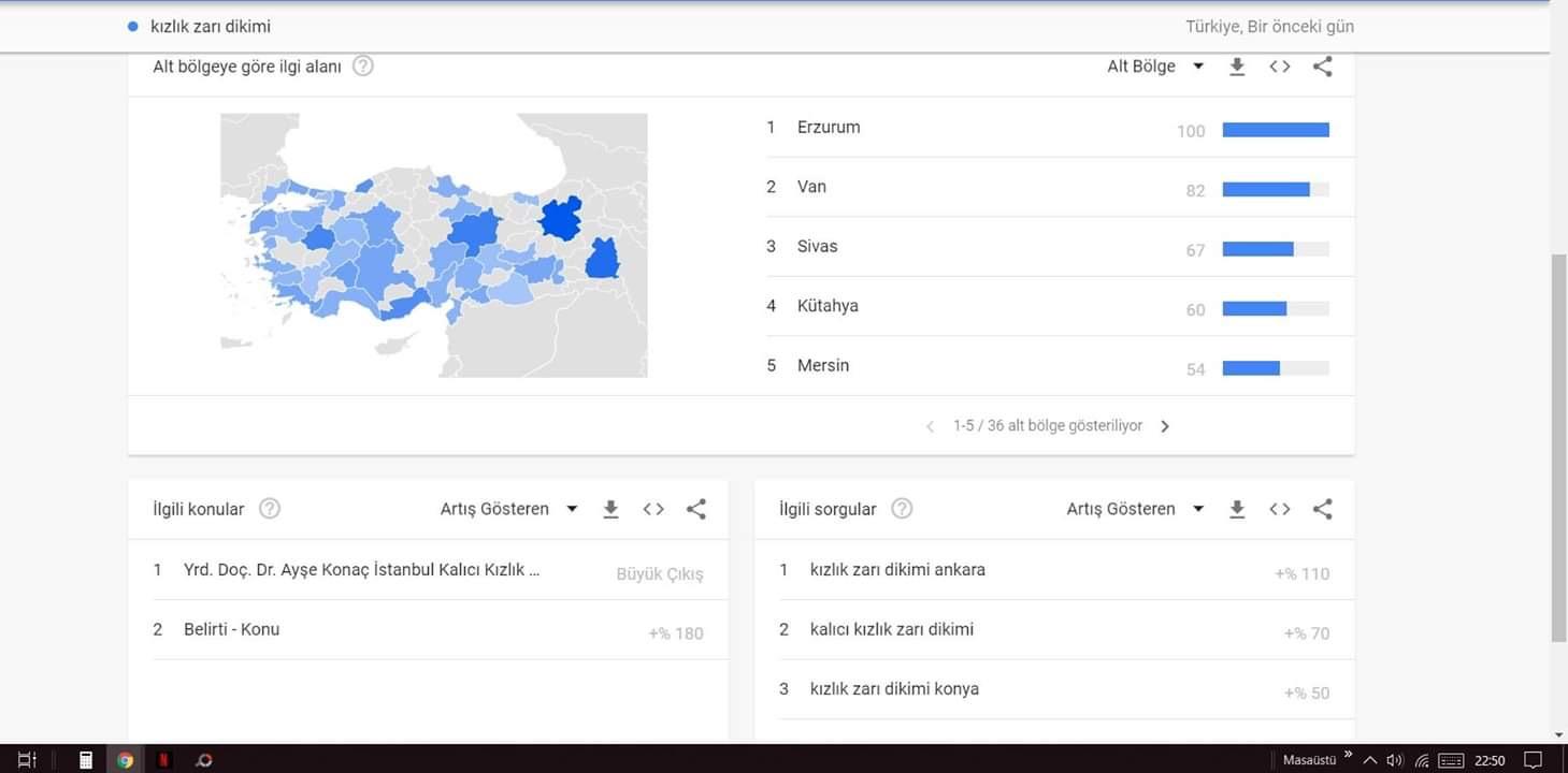 google trends te ibretlik aramalar