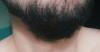 sözlük yazarlarının sakalları