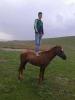 hoşlanılan beyi atla kaçırmak