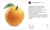şahan gökbakar ın fatih portakal a destek vermesi