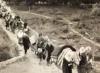 2 kasım 1943 karaçay türkleri sürgünü
