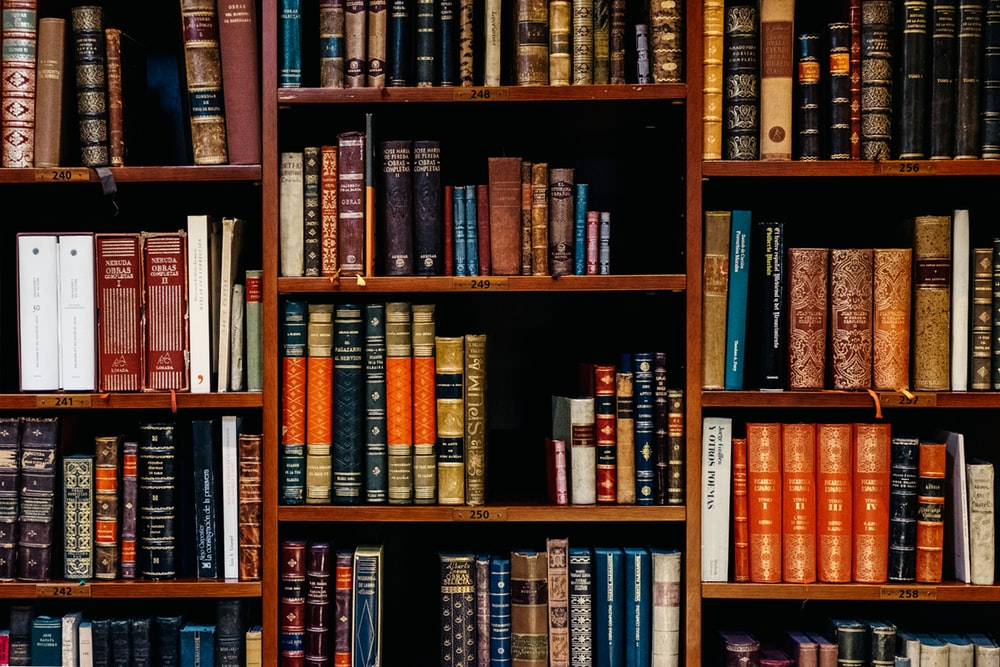 zeynep bayancuk #1920309 - uludağ sözlük galeri