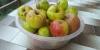organik elma