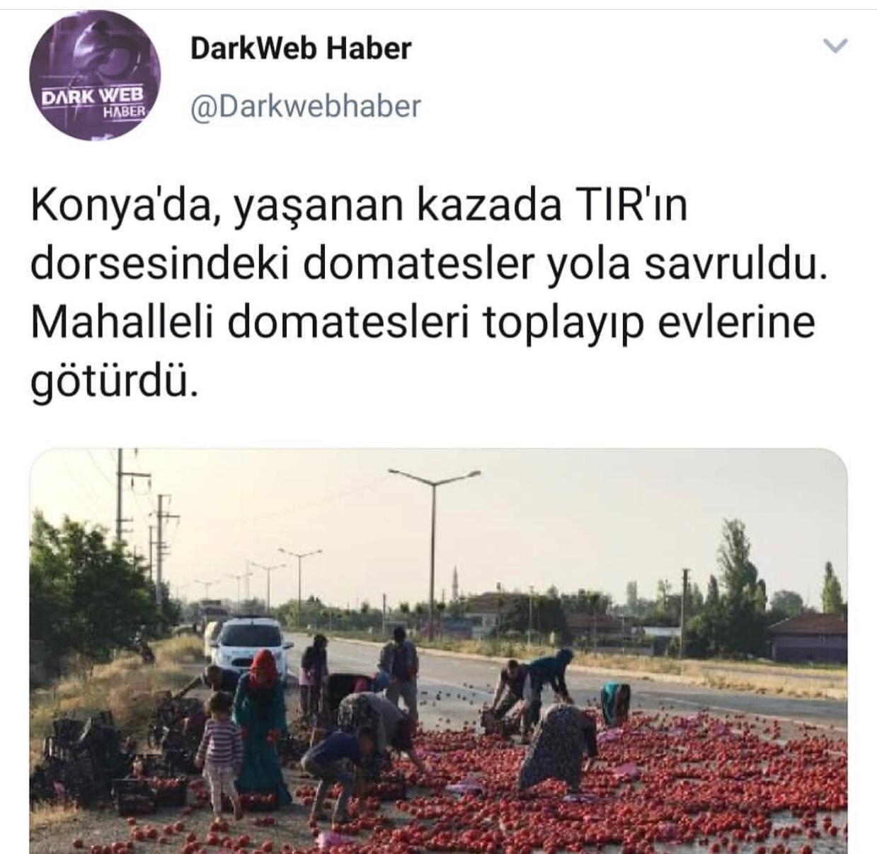 konya da devrilen domates kamyonunun yağmalanması