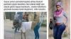 türk kızlarının tayt giymiş bazlama gibi olması