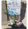 sokak hayvanlarının kaplarına çöp atan piçler