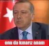 avusturya polisinin türk yolcuları köpekle araması