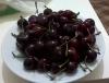 yazarların en sevdiği meyve