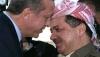 16 kasım 2013 diyarbakır toplu açılış töreni