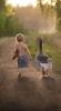 çocukların hayvan sevgisinden mahrum yetişmesi