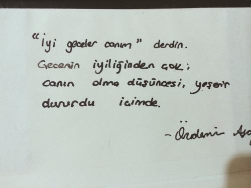 %C3%B6zdemir-asaf_1249008.jpg
