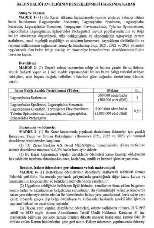 4 mayıs 2021 cumhurbaşkanlığı balon balığı kararı