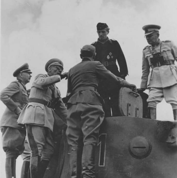 Турки встречаются с Манштейном на Курской дуге