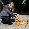 tayyip erdoğan ın hayvan sevgisi