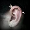 kulak kıkırdağını deldirmek