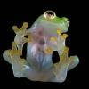cam kurbağası