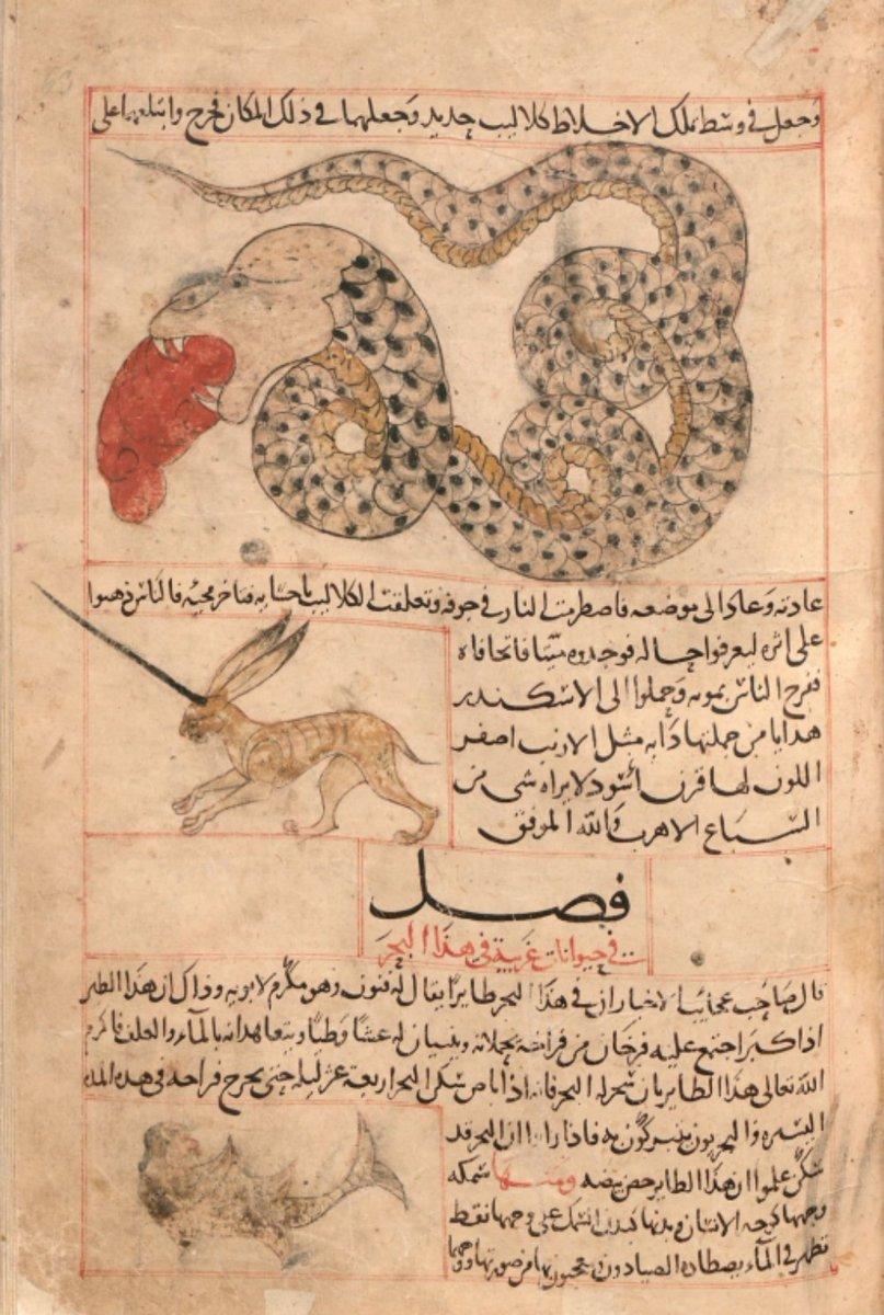 zekeriyya bin muhammed el kazvini